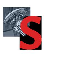 Stephan van Duin Logo